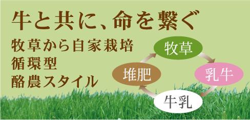 牛と共に、命を繋ぐ牧草から自家栽培循環型酪農スタイル
